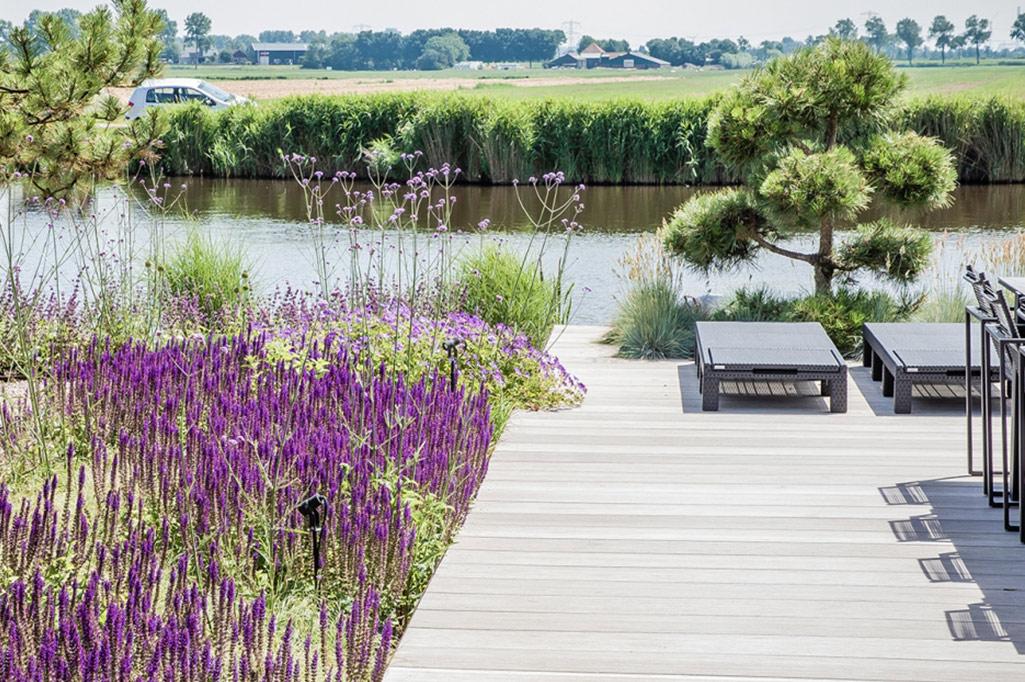 Project strakke tuin in Noord-Holland